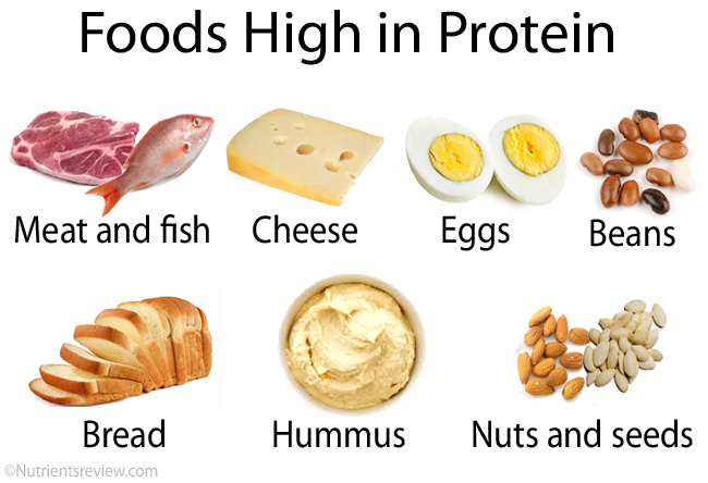 High Peotein Low Fat Foods